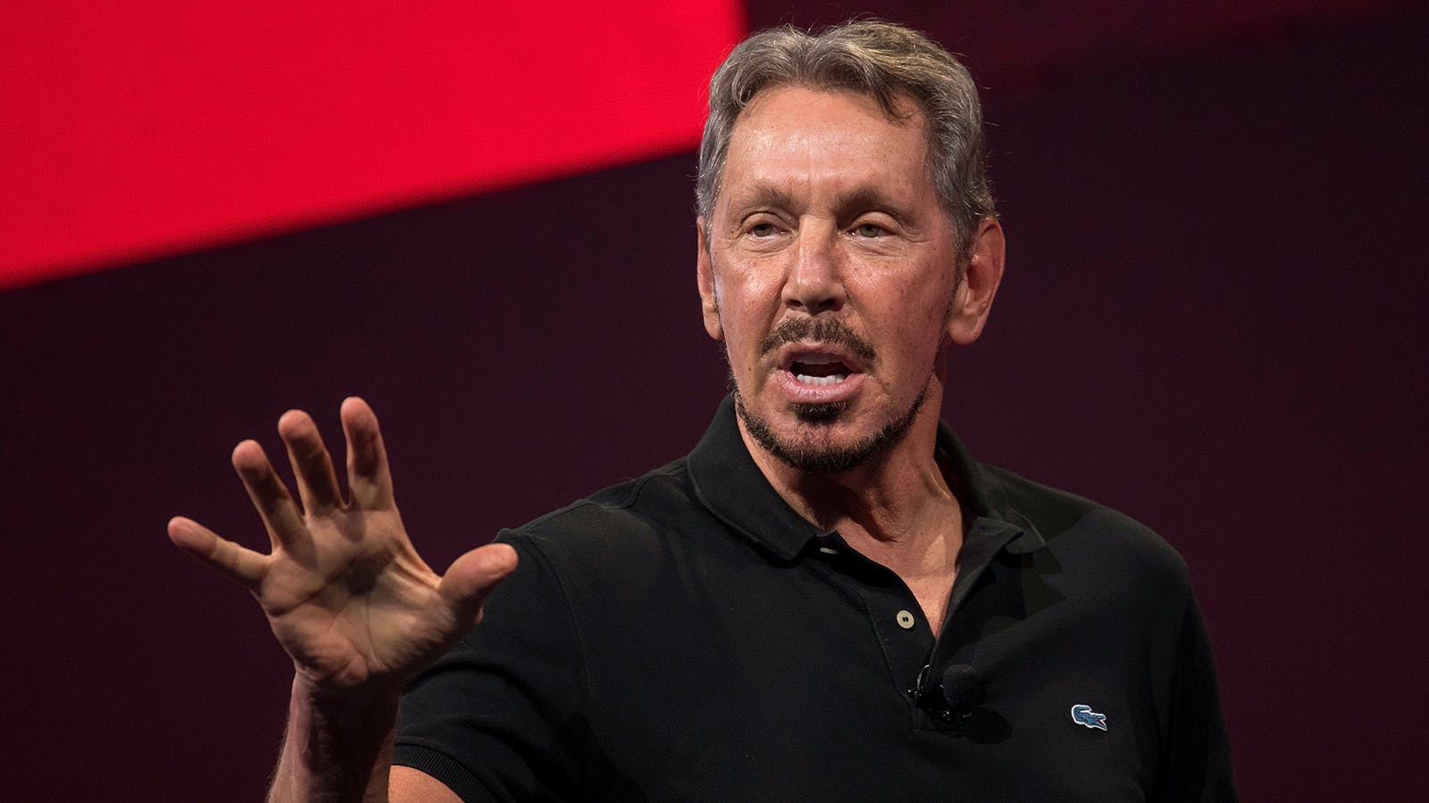 Oracle co-founder Larry Ellison. Photo: Bloomberg
