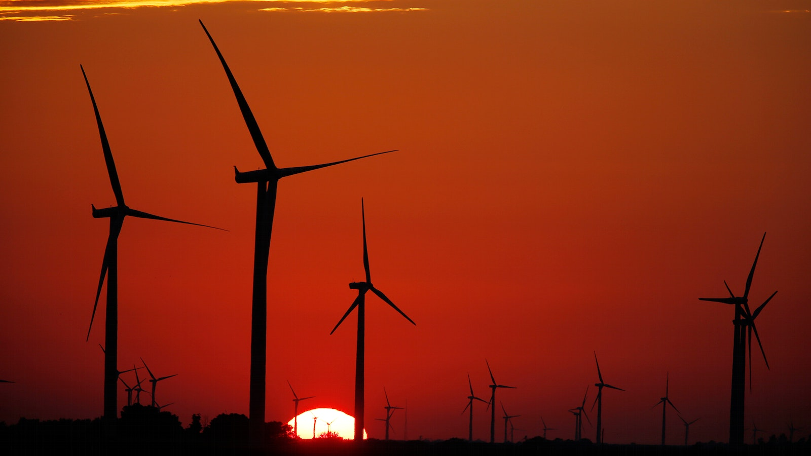 An Amazon wind farm in Fowler Ridge, Ind. Photo by Bloomberg