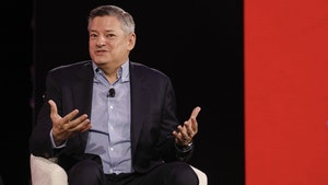 Netflix co-CEO Ted Sarandos. Photo by Bloomberg